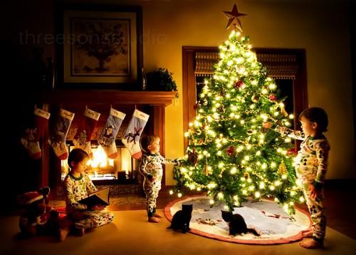 Маленькие дети и котята возле новогодней елки
