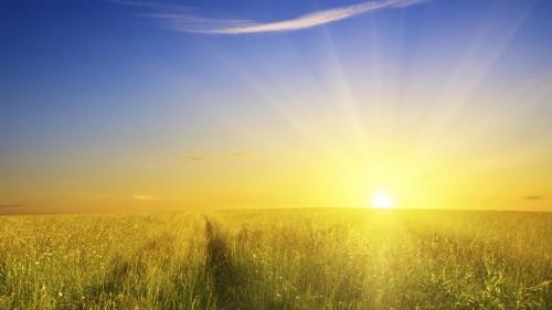 Солнечные лучи на закате