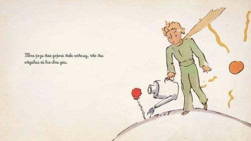 Маленький принц поливает розу, иллюстрация автора