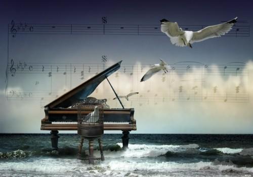 Коллаж из фото - рояль, море, чайки, ноты