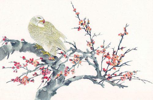 Рисунок с изображением орла, сидящего на дереве