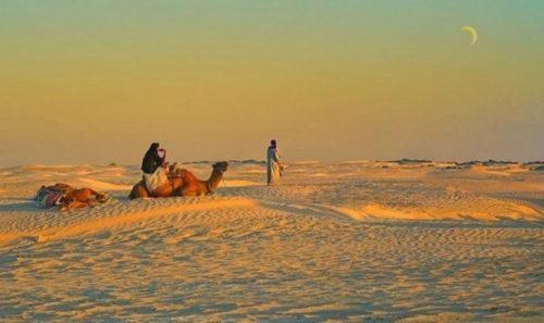 Фото в пустыне по мотивам книги Алхимик Пауло Коэльо