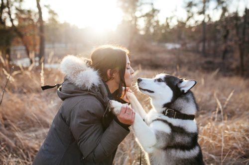 Девушка целует собаку лайку