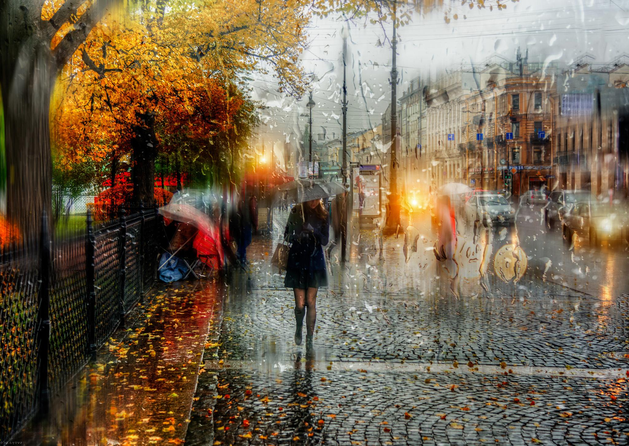 красивые картинки дождь осень
