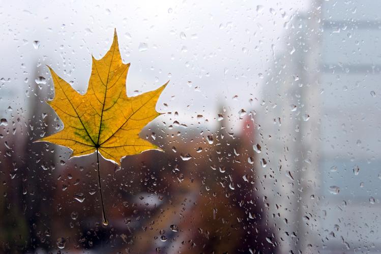 Фото осень дождь ветер
