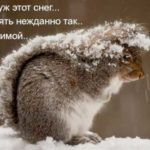 Снег зимой
