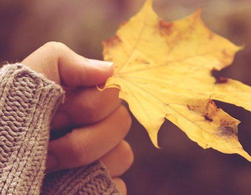 Осенний лист в женской руке